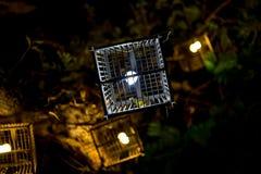 Лампа клетки птицы Стоковые Фотографии RF