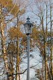 Лампа парка Стоковые Фотографии RF