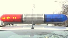 Лампа полиции проблескивая закручивающ над автомобилем акции видеоматериалы