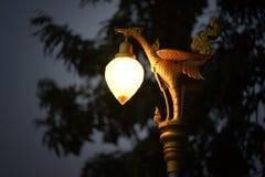 Лампа сада дорожки земная Стоковое Изображение