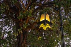 Лампа сада стоковое изображение rf