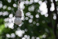 Лампа электрической лампочки Стоковая Фотография