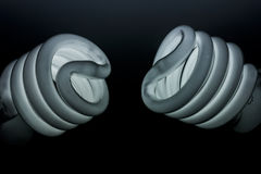 Лампочка Стоковое Изображение RF