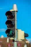 Лампы знака уличного движения и движения Стоковое фото RF