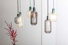 Лампы и завод стоковое фото rf
