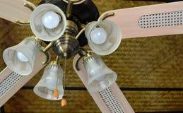 Лампы и потолочные вентиляторы на моей живущей комнате стоковое изображение rf