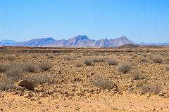 Ландшафты пустыни с горами на юге Намибии Засушливый сезон, сухая растительность стоковые фото
