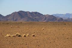 Ландшафты пустыни с горами на юге Намибии Засушливый сезон, сухая растительность стоковая фотография