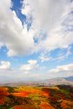 ландшафты сельской местности Стоковые Фото