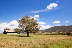 Ландшафт Австралия Allans плоский стоковые фотографии rf