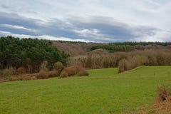 Ландшафт Арденн с фланком холма завальцовки с соснами и лиственными деревьями под темными облаками стоковая фотография