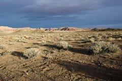 ландшафт Аризоны Стоковые Изображения