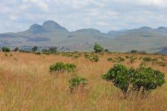 ландшафт Африки южный Стоковая Фотография RF