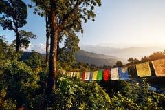 Ландшафт больших Гималаев стоковая фотография rf