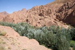 Ландшафт вадей Марокко Стоковое Изображение RF