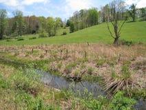 Ландшафт вдоль следа Creeper Вирджинии стоковое фото