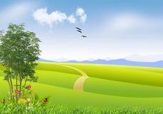 Ландшафт весны природы с зеленой травой и цветками иллюстрация вектора