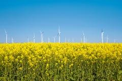 Ландшафт весны с ветротурбинами стоковые изображения