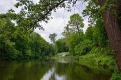 Ландшафт весны с прудом, зеленой травой и деревьями Парк стоковые фото