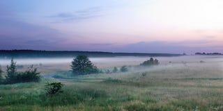Ландшафт вечера лета Стоковое Изображение RF