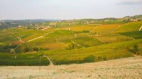 Ландшафт виноградников Monferrato Roero Стоковое Фото
