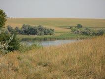 Ландшафт в августе стоковые изображения rf
