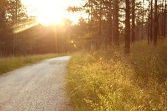 Ландшафт в заходе солнца стоковое изображение rf
