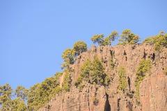 Ландшафт в Канарских островах Gran Canaria тропических вулканических иллюстрация вектора