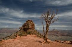 Ландшафт в национальном парке гранд-каньона, Аризона, США hiking тропка Красивый вид, пункт Стоковое Изображение