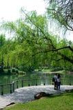 Ландшафт в парке Стоковые Фотографии RF
