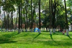 Ландшафт в парке Стоковая Фотография RF