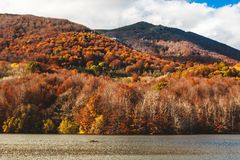 Ландшафт в солнечном дне, El Montseny Каталония - Испания леса и озера осени стоковое фото