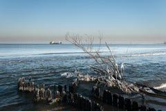 Ландшафт в январе. стоковое изображение rf