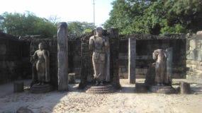 Ландшафт в Polonnaruwa Шри-Ланка стоковое фото rf