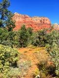 Ландшафт в Sedona Аризоне Стоковое фото RF