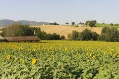 Ландшафт в Umbria около Todi Стоковое Изображение