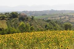 Ландшафт в Umbria около Todi Стоковая Фотография