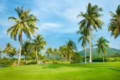 ландшафт гольфа курса Стоковые Фотографии RF