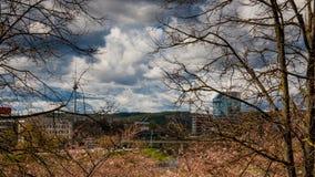 Ландшафт города Вильнюса весной стоковое фото rf
