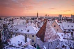 Ландшафт города с покрытыми снег крыть черепицей черепицей крышами Стоковое Изображение RF