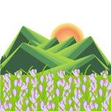 Ландшафт горы весны Зеленые striped холмы, фиолетовые цветки крокуса, желтое солнце Fl бесплатная иллюстрация