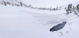 Ландшафт горы зимы в Карпатах стоковое фото rf