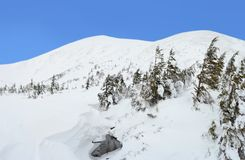 Ландшафт горы зимы в Карпатах стоковое изображение
