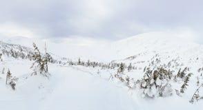 Ландшафт горы зимы в Карпатах стоковое изображение rf