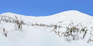 Ландшафт горы зимы в Карпатах стоковая фотография rf