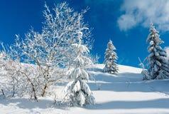 Ландшафт горы зимы снежный Стоковое Фото