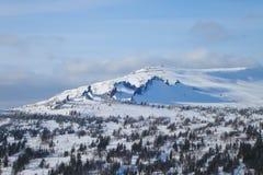 Ландшафт горы зимы с бореальным лесом и 3 острыми утесами выхода на поверхность стоковые фото
