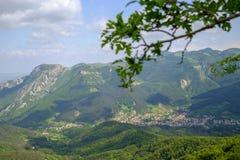 Ландшафт горы и ветвь дерева Стоковые Фото