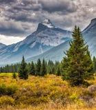 Ландшафт горы, канадские скалистые горы Стоковые Изображения RF