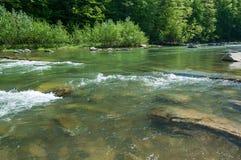 Ландшафт горы, лес и быстрое река горы Красивый пейзаж с рекой горы Стоковые Фотографии RF